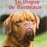 Dogue de Bordeaux par Sylviane Tombousky